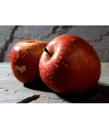 Fruit Apple Fuji ESPALIER 2 TIER