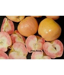Fruit Apple Pink Pearl *