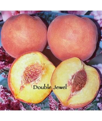 Fruit Peach Double Jewel