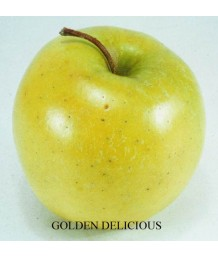Fruit Apple Golden Delicious