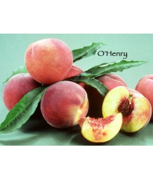 Fruit Peach O'Henry