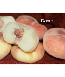 Fruit Peach Donut-Stark Saturn