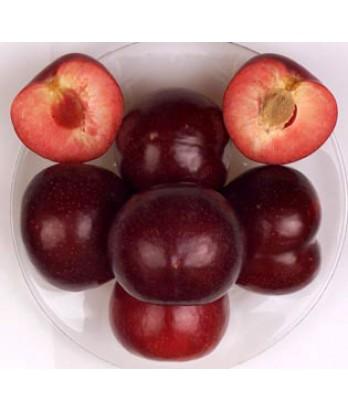Fruit Pluot Flavor King