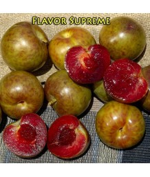 Fruit Pluot Flavor Supreme