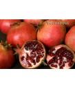 Fruit Pomegranate Wonderful