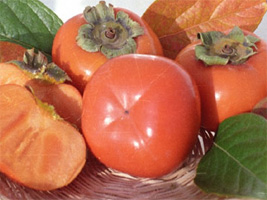 The Persimmon is resistant to Armillaria root rot.