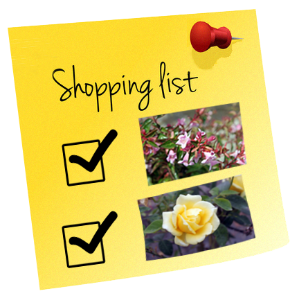 Create a shopping list to bring to Urban Tree Farm Nursery in Santa Rosa, CA.